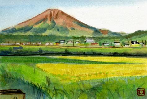 fujiyosida-ine-02.jpg