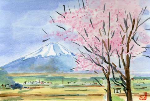 osiho-sakura-utino.jpg